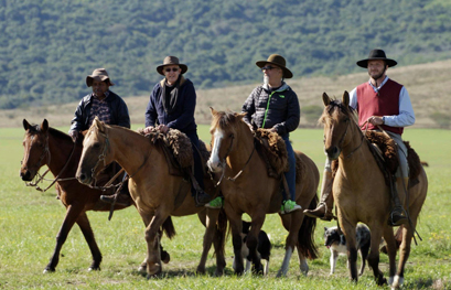 שיירת רוכבים וסוסים